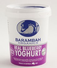 Yoghurt Blueberry 500g