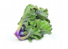 Kale Baby 120gm Punnet