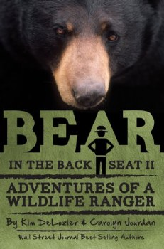Bear in the Backseat 2 by Kim DeLozier & Carolyn Jourdan