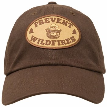 Smokey the Bear Hat with Prevent Wildfires Patch - Brown