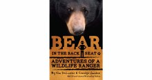 Bear in the Backseat by Kim DeLozier & Carolyn Jourdan