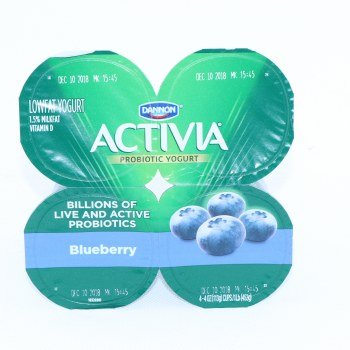 Activa Blueberry Yogurt