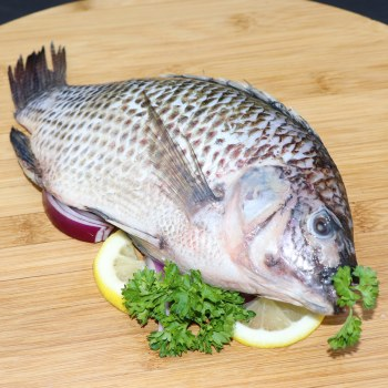 Tilapia (farm Raised)