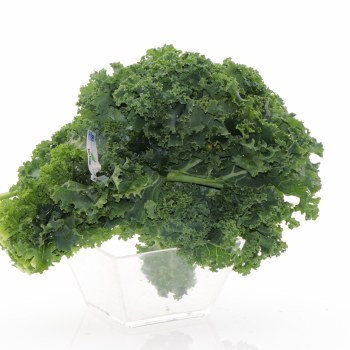 Green Kale  1 bunch