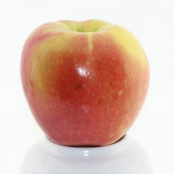 Honeycrisp Apples  1 lb