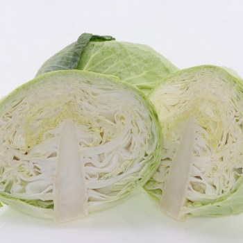 Green Cabbage  1 lb