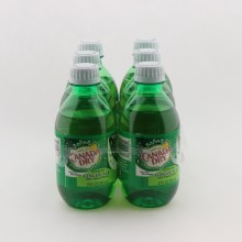 Canada Dry  ginger 6pk 6 pack