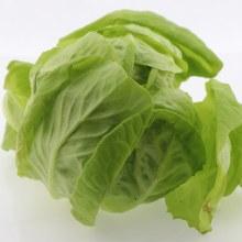 Boston Lettuce  1 pc