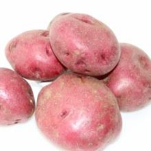 Red Potatoes  1 lb
