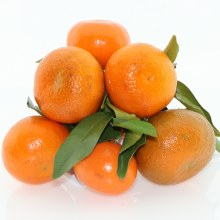 Stem And Leaf Tangerines