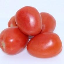 Plum Tomatos