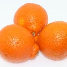 Minneola Oranges  1 lb