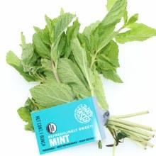 Tasty Mint Bunch