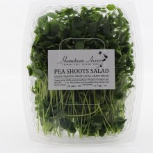 Ha Pea Shoots Salad