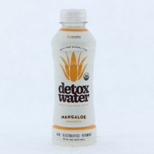 Detox Water  Bioactive Aloe Water  Mango