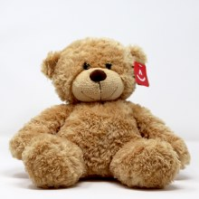 "WISHLIST DONATION - Classic 13"" Teddy Bear"