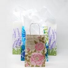 Gift Bag w/Tissue Paper