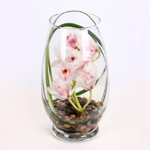Petite Cymbidium Orchid Vase by Kittelberger