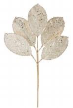 Gold Ice Magnolia Leaf