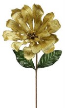 Gold Magnolia Stem