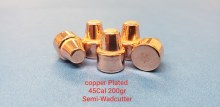 .45  Caliber  200gr. SW 500ct.  XTB Copper  Plated