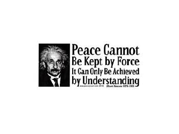 Eintein Peace Bumper Sticker