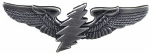 Grateful Dead  Silver Bolt Wing Pin