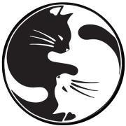 Yin Yang Cat Patch