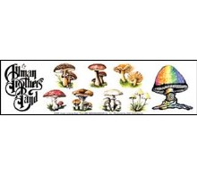 Allman Brothers Band Mushroom Sticker