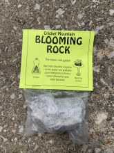 Blooming Rock