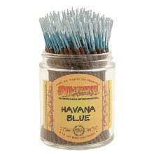 Havana Blue Wildberry Incense Mini Sticks