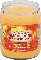 Fall n Leaves Smoke Odor Exterminator Candle