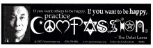 Dalia Lama Quote Bumper Sticker