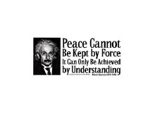 Eintein Peace Bumper Sticker