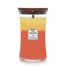 Woodwick Large Jar Candle Torpical Sunrise