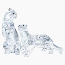 Swarovski Otters