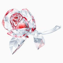 Swarovski Blossoming Rose, Red