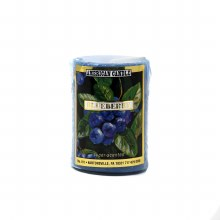 American Candle Blueberry 2x3 Pillar Candle