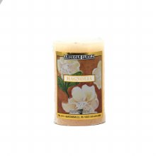 American Candle Magnolia 2x3 Pillar Candle