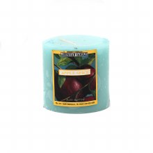 American Candle Apple Spice 3x3 Pillar Candle