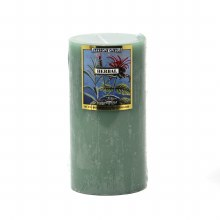 American Candle Herbal 3X6 Pillar Candle