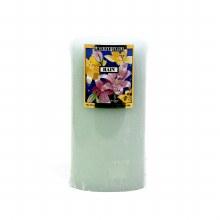 American Candle Rain 3X6 Pillar Candle