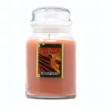 American Candle Cinnamon 22 OZ Jar Candle