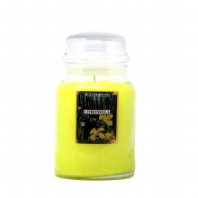 American Candle Citronella 22 OZ Jar Candle