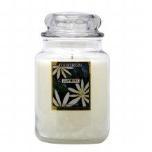 American Candle Jasmine 22 OZ Jar Candle