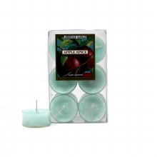 American Candle Apple Spice Tea Lights Candle