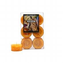 American Candle Harvest Tea Lights Candle
