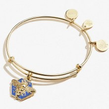 Alex and Ani Color Infusion Honey Bee EWB SG