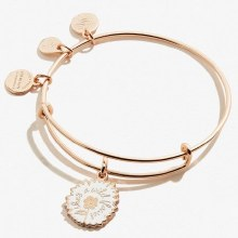 Alex and Ani Color Infusion She's A Wildflower EWB SR