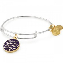 Alex and Ani Harry Potter Its Our Choices EWB  Two Tone SS